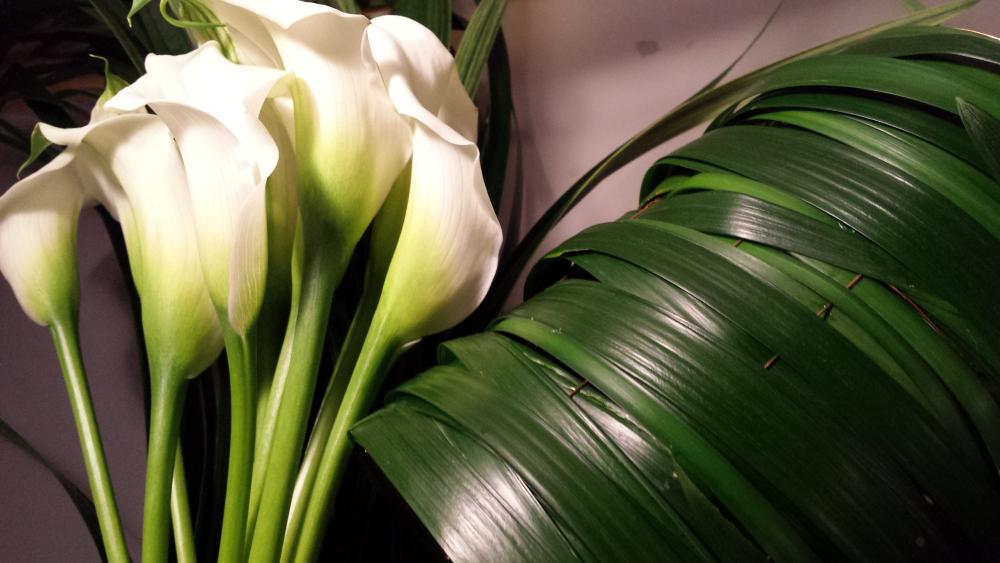 ramo-invierno-02-la-floreria
