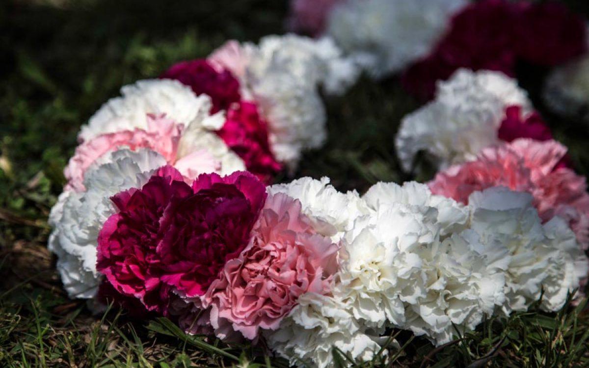 Collar de flores, jaimala, inspiración Hindú con claveles de colores 00 | La Florería