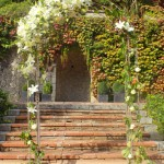 Diseño y creación de ceremonia Clásica en el Bell Recó | La Florerá