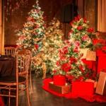 Cena de Navidad de Coty Prestige en sala Teatro de Barcelona 00 | La Florería