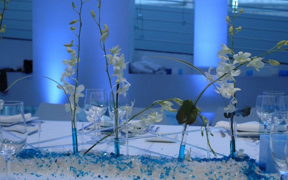 Decoración y puesta de escena de evento Iceberg en Macba 15 |La Florería