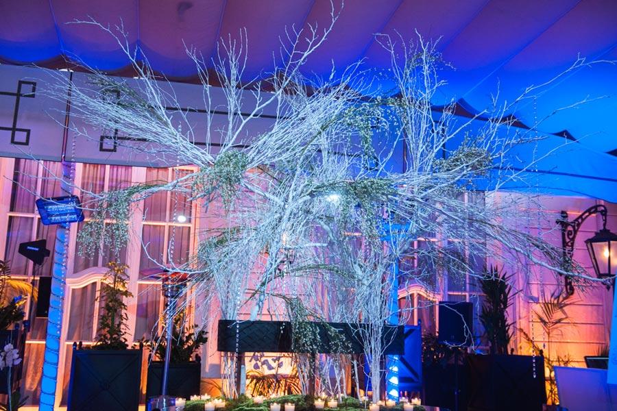 Winter Cisco event decoration